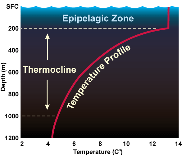 The temperature of the bottom of the ocean