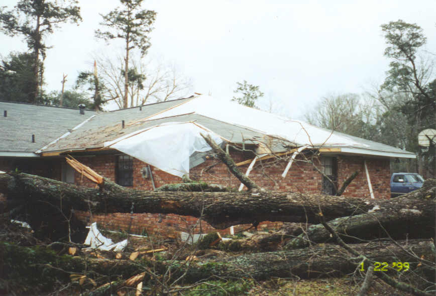 Another view of fallen tree on home and tree tops snapped