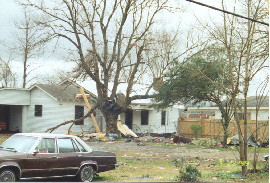 Tree and roof damage