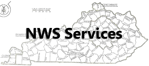 NWS Services banner