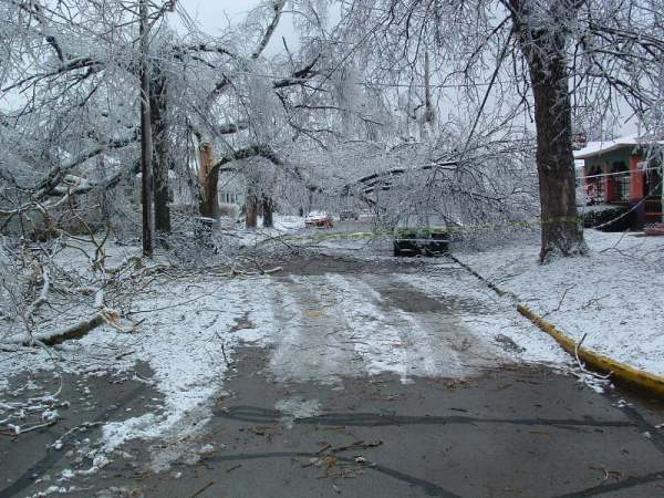 Bluegrass Ice Storm