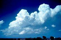 Cumulus congestus (towering cumulus)