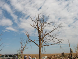 Damage from the first of two tornadoes to impact Ralls, TX. Click on the image for a larger view.