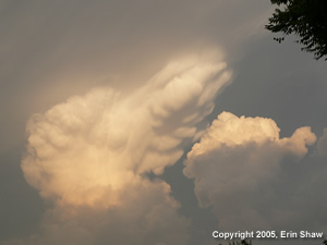 Picture of building storms taken by Erin Shaw on May 12, 2005
