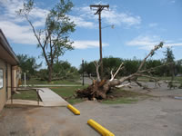 Damage associated with the tornado in the Fair Park area (east of the High School).
