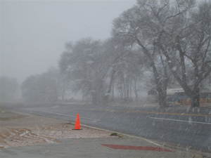 Picture of snow in Muleshoe