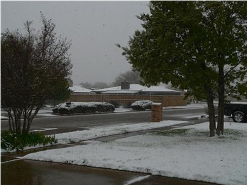 Picture of snow. (Take by Erin Shaw)
