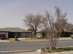 A picture taken from a south Lubbock neighborhood during the first half of the wind/dust event on 20 February 2012. Click on the image for a larger view.