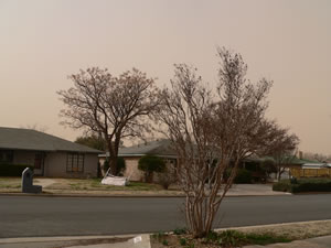 A picture taken from a south Lubbock neighborhood near the height of the wind/dust event on 20 February 2012. Click on the image for a larger view.