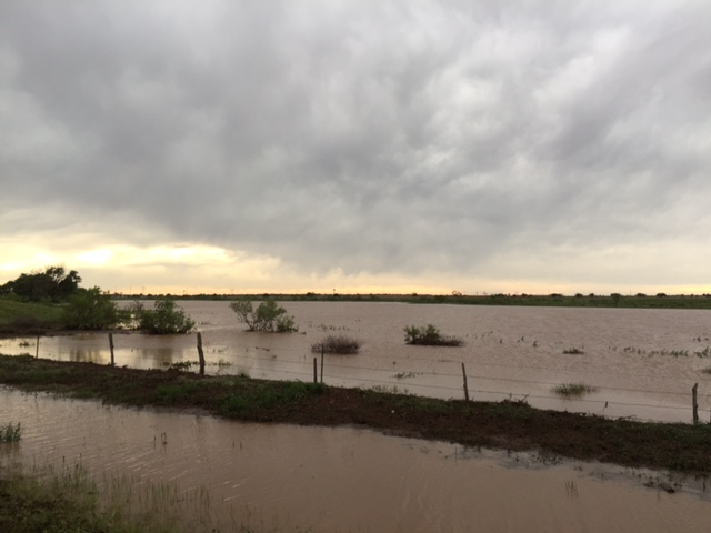 """Lake Shallowater"" on Thursday, 28 May 2015. The picture is courtesy of Bruce Haynie."