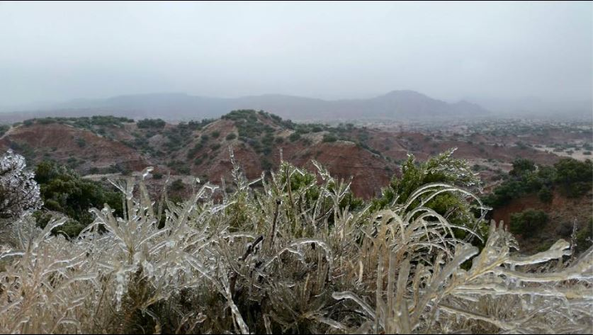 Ice accumulations at Caprock Canyons State Park on November 28, 2015.