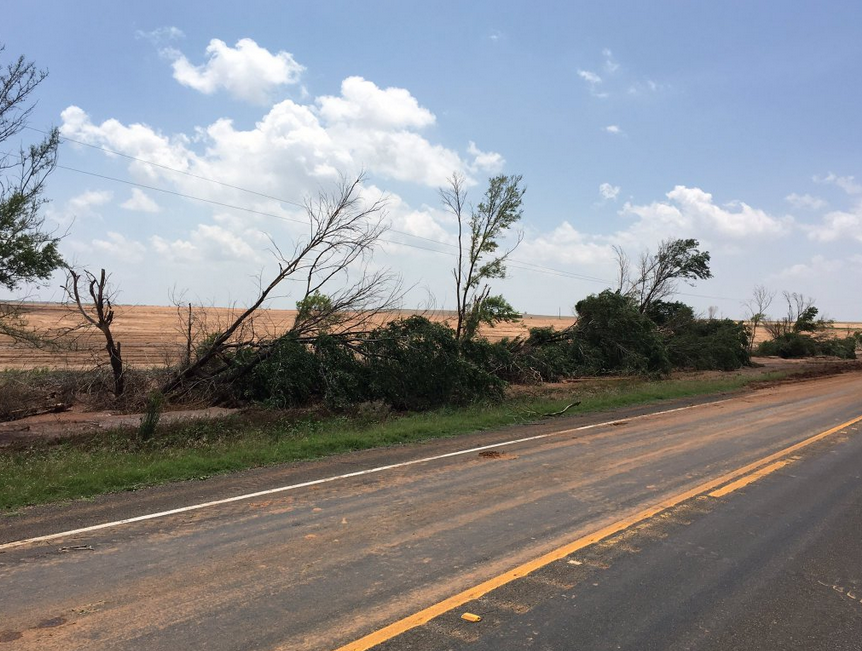 Tree damage noted between Plaska and 7-9 miles west of Estelline in northern Hall County during a damage survey conducted on 23 May 2016. This damage is consistent with an EF-1 tornado.