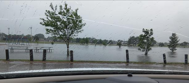 Flooding observed at the Muleshoe City Park on 1 June 2016. The image is from Ester Maria Estrada.