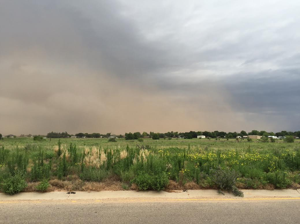 Dust approaching Littlefield during the evening of 11 June 2016. The picture is courtesy of Tim Berry.
