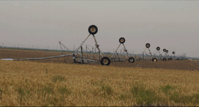 Pictures of a toppled center pivot caused by a severe storm that moved just north of Muleshoe on the evening of 9 June 2016. The picture is courtesy of Tyler Black and Channel 6 Muleshoe.