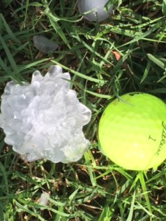 Hail that fell in Memphis Tuesday evening (10 May 2017). The picture is courtesy of Kelli Maddox.