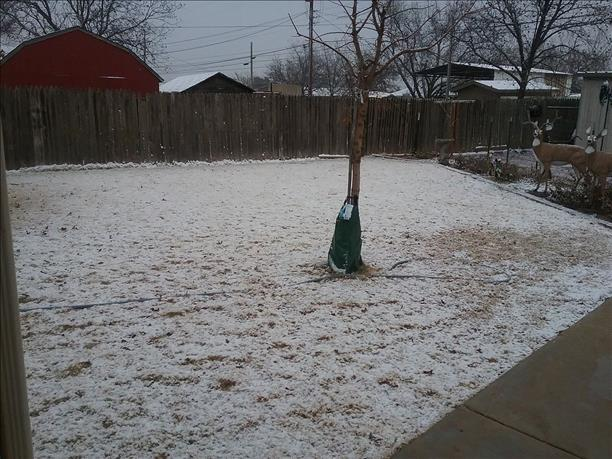 A dusting of snow in Post Friday evening, December 22, 2017. The picture is courtesy of KCBD and Belinda Byrd.