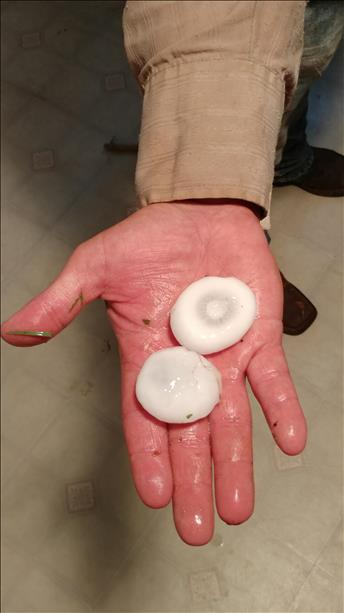 Large hail that fell in Spur on 1 June 2018. The picture is courtesy of KCBD.