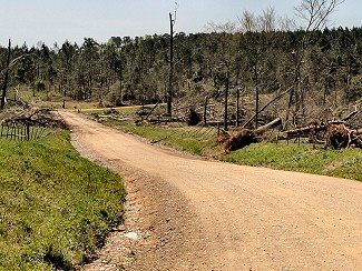 Numerous trees were uprooted or snapped by a weak tornado (rated EF1) near Umpire (Howard County) on 04/13/2018.