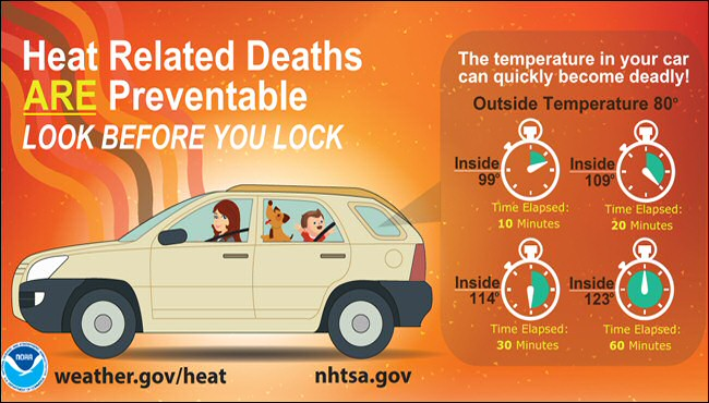 To prevent heat deaths, remember to look before you lock.
