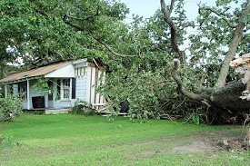 A tree fell into a house about 2 miles east of Griffithville (White County).