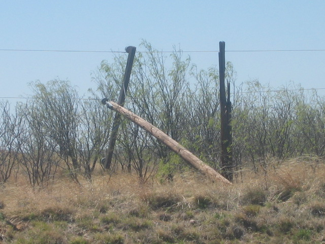 storm damage showing a damaged power pole