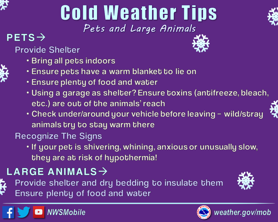 Alabama Winter Weather Awareness Week