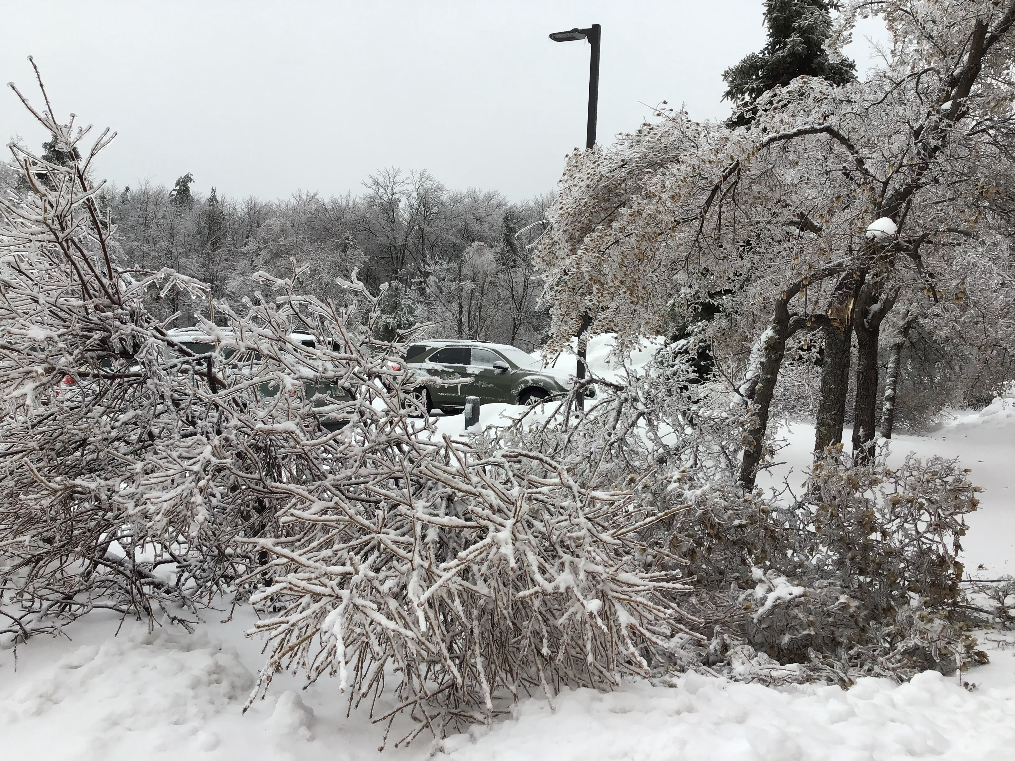 February 4th 2019 Historical Ice Storm