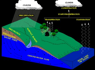 Simplified hydrologic cycle ccuart Image collections