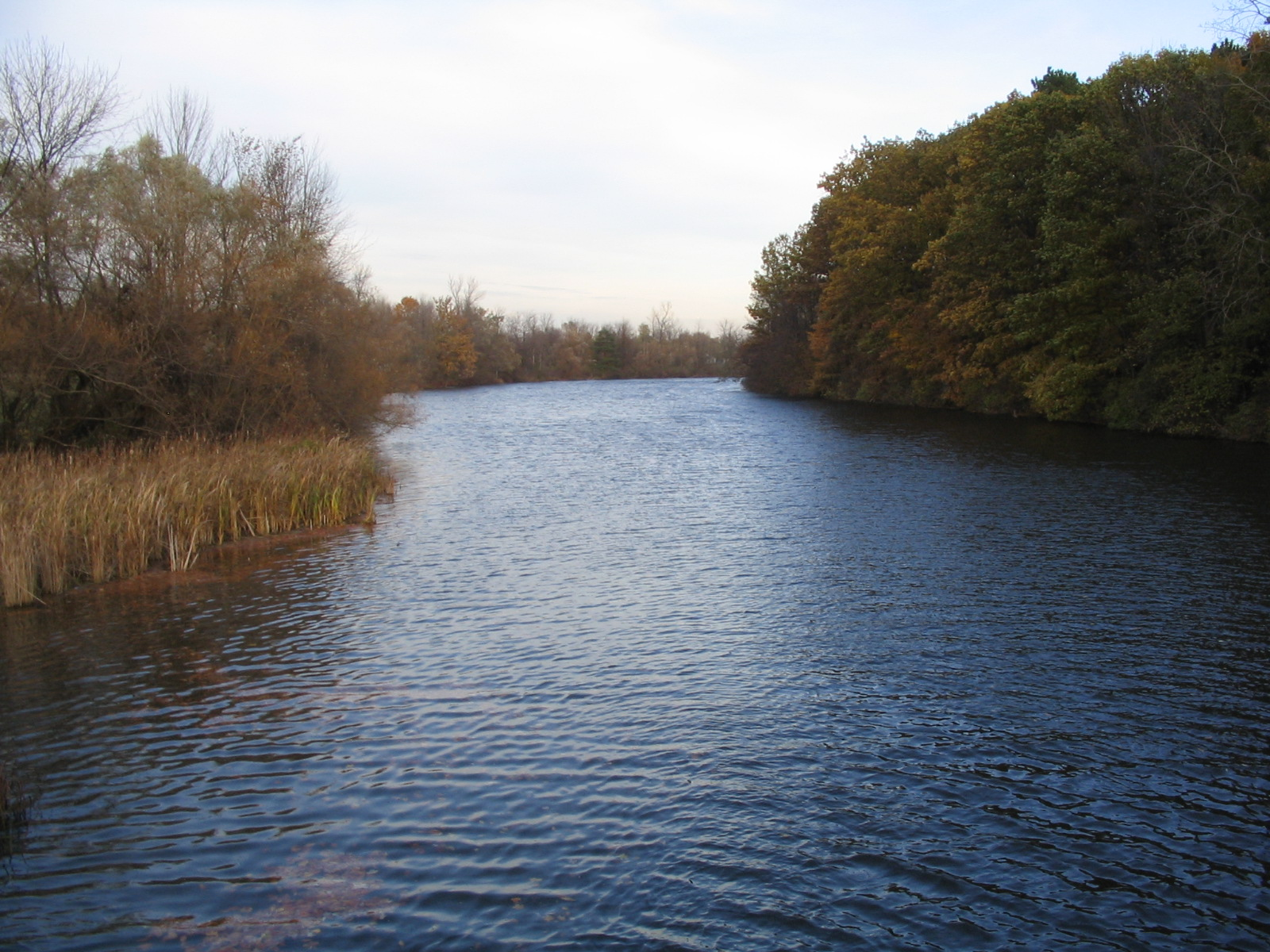 Photograph of the Black Creek at Churchville, NY (CHRN6) looking downstream