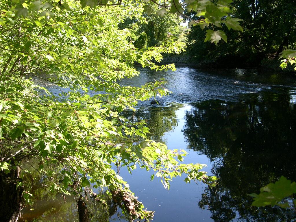 Pawtuxet River at Cranston, Rhode Island