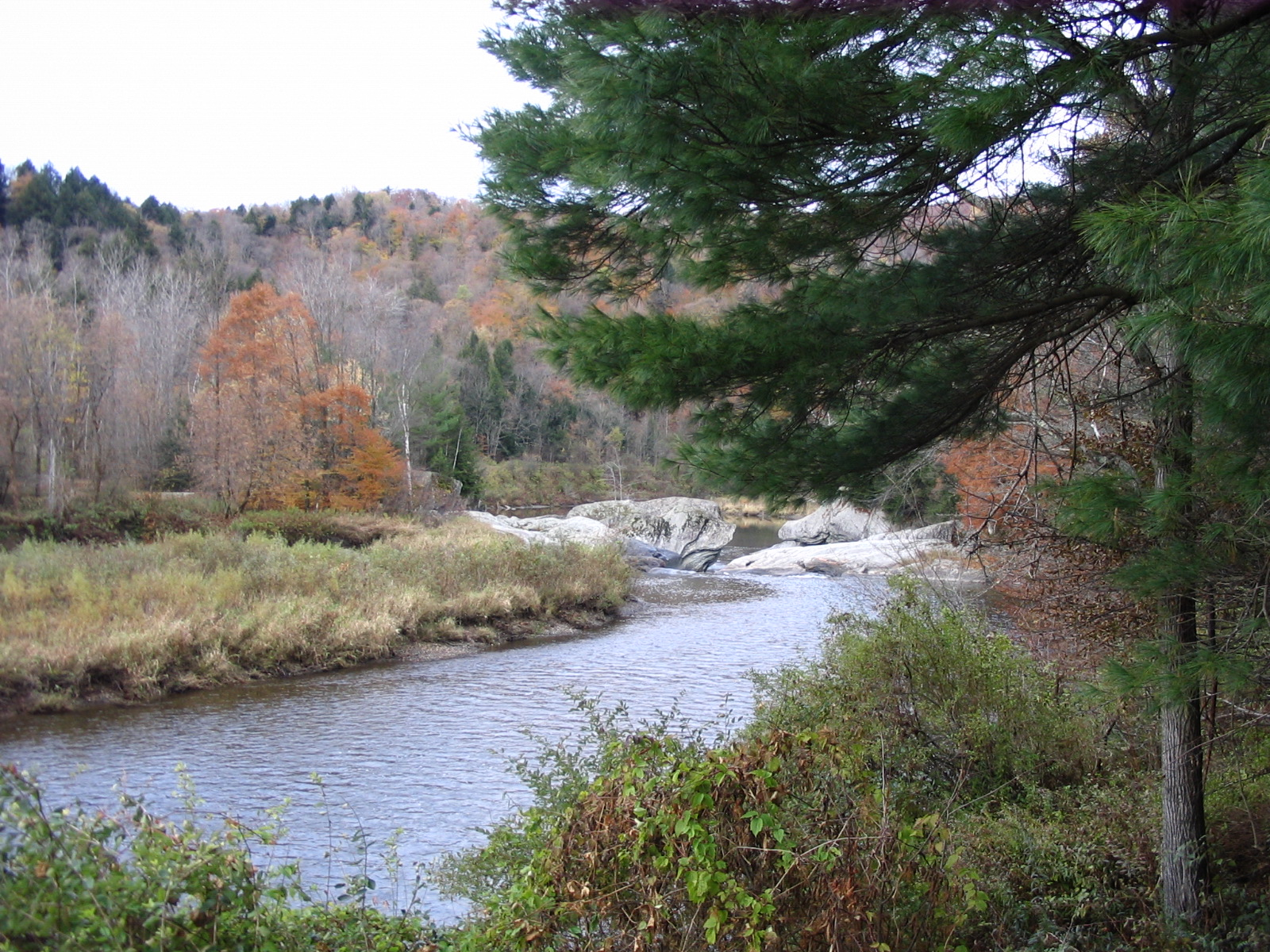 Photograph of the Lamoille River at Johnson, VT (JONV1) looking downstream