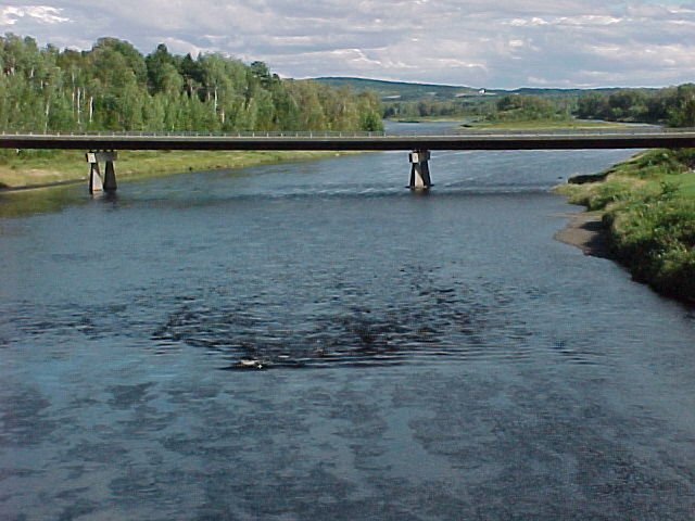 Photograph of the Aroostook River at Washburn, ME (WSHM1) looking downstream