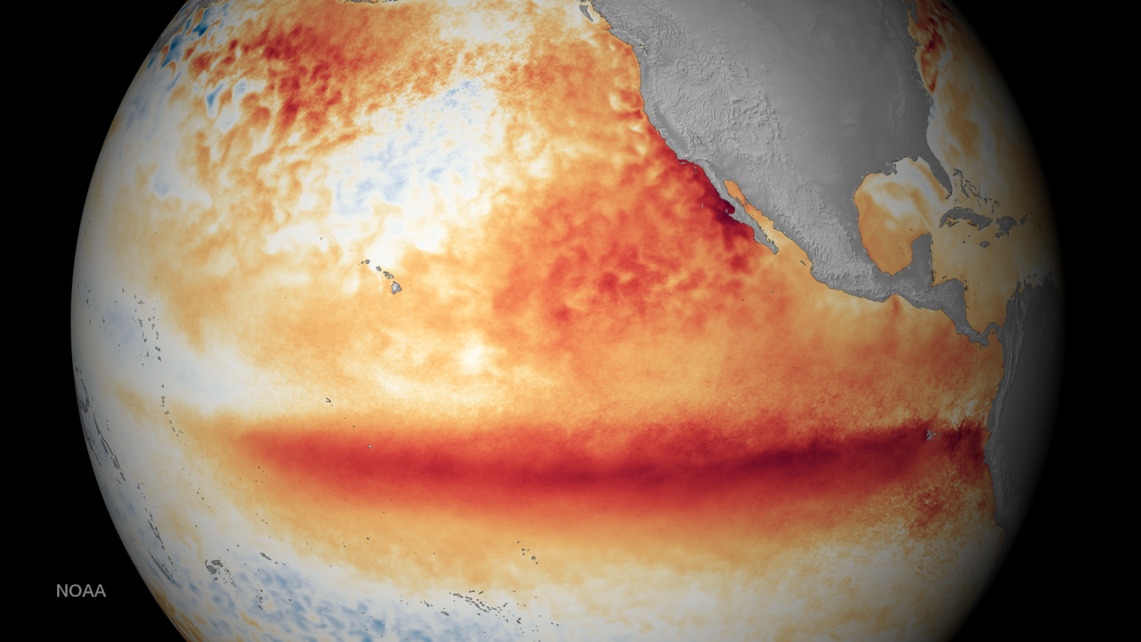 The 2015-2016 El Niño was among the strongest on record. This image shows the satellite sea surface temperature departure for the month of October 2015, where orange-red colors are above normal temperatures and are indicative of El Niño. Source: NOAA