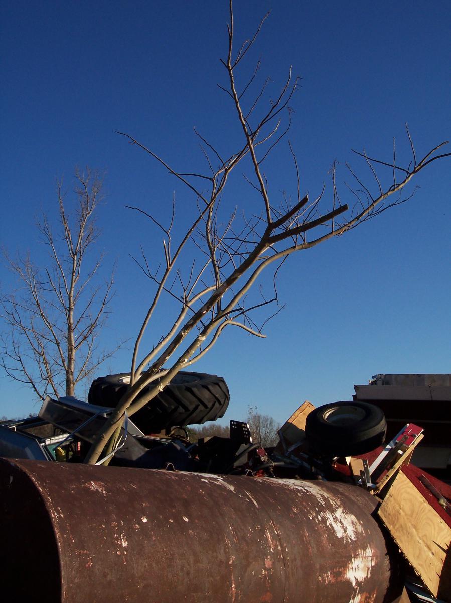 November 15 2005 Tornado Outbreak