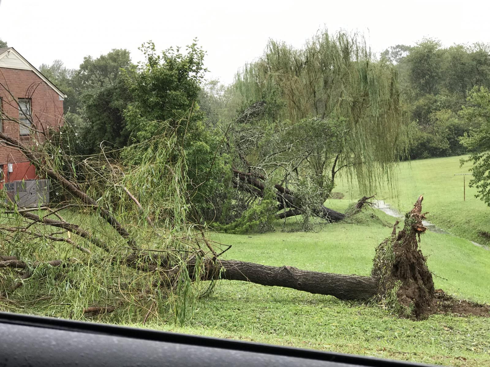 Donelson damage