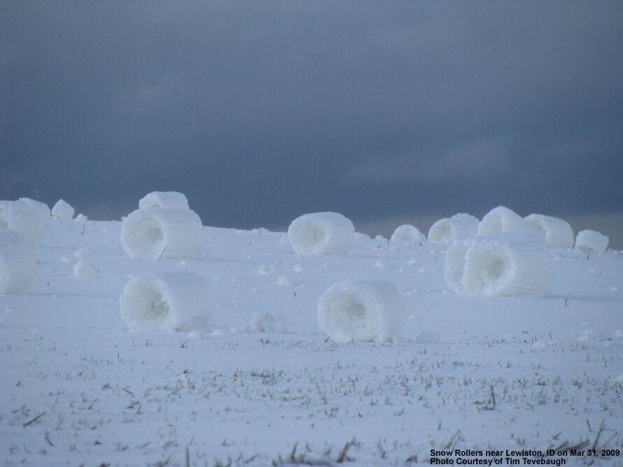 A field of snow rollers in the southern Idaho Panhandle