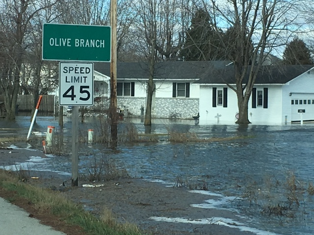 Photo of flooding in Olive Branch