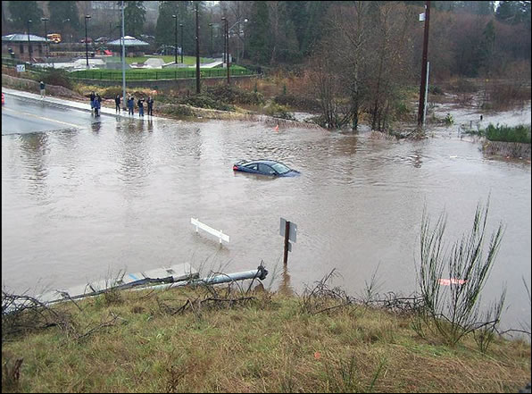 Cowlitz River November 6, 2006. Photo courtesy of Lewis County