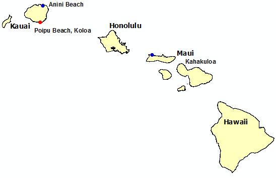 Surf Deaths in Hawaii 2017