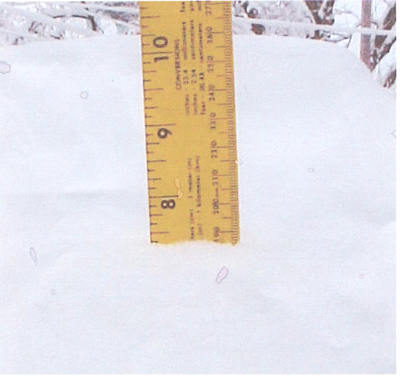 7.5 inches of snow in Ashdown, AR