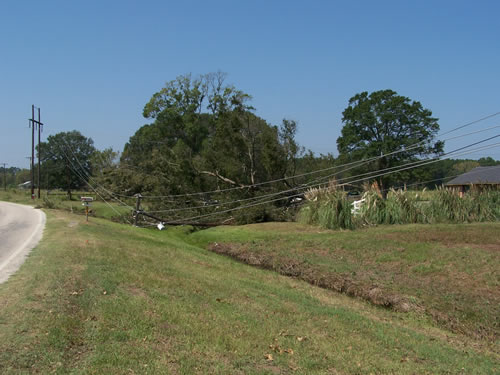 Power lines downed by Hurricane Rita