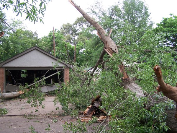 Large tree crashed through a garage and onto a home