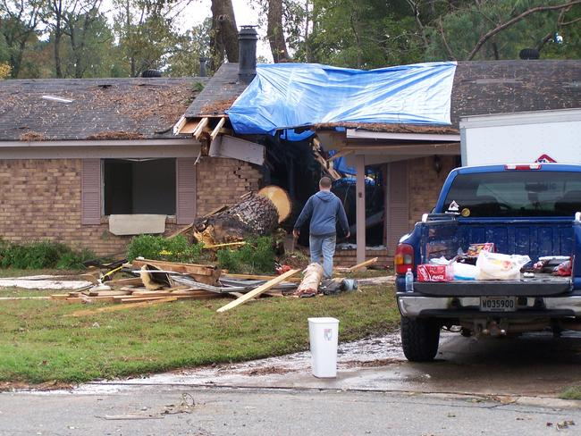 A large pine fell on a home in Haughton, LA