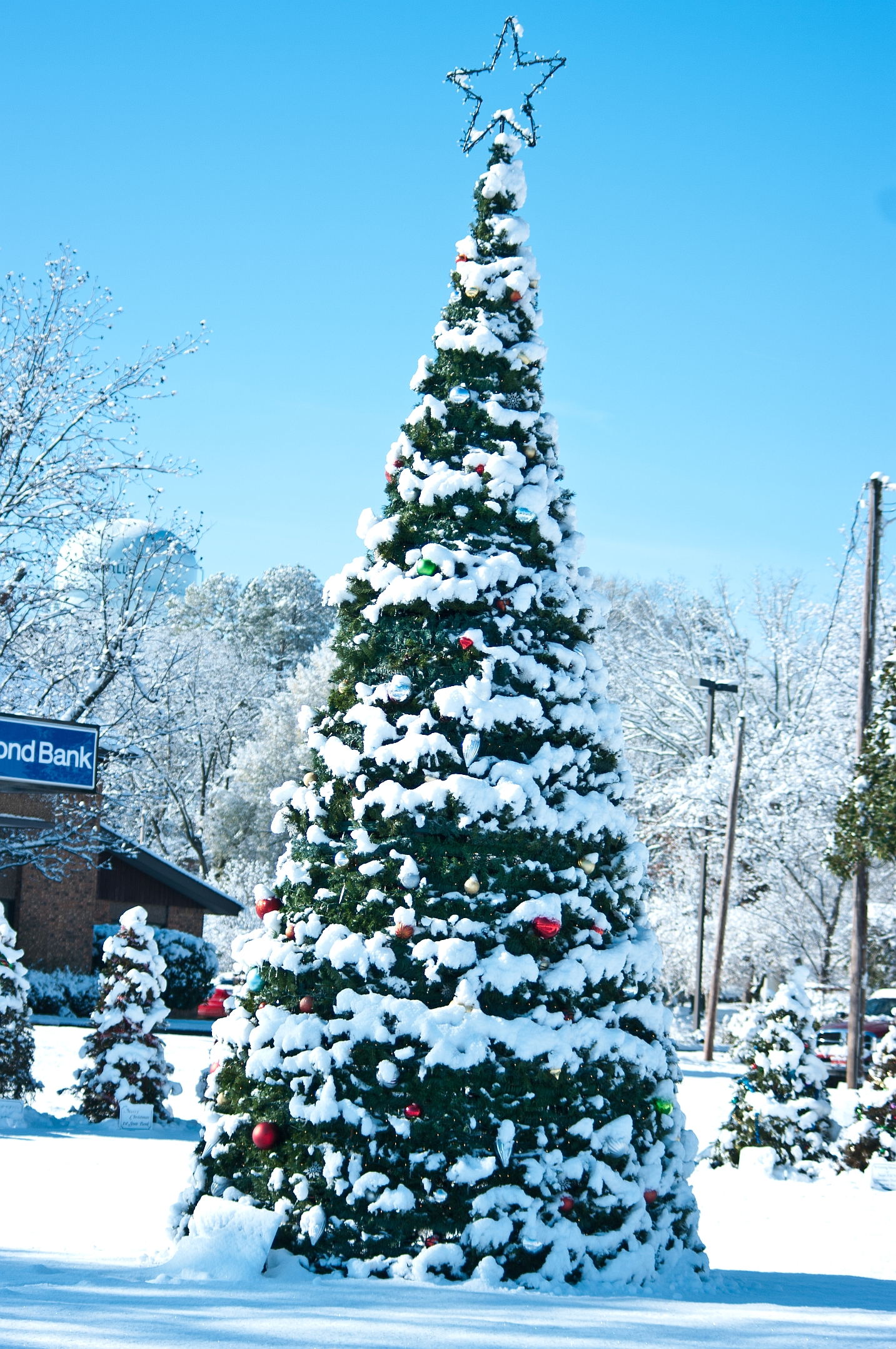 Large Christmas tree covered in snow in Nashville, AR