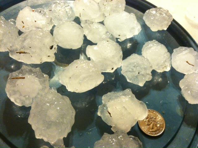 Golf-ball size hail that fell in Cook County, GA on March 23, 2013. Note the hail is much larger in diameter than the quarter.