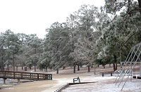 Photo of ice accumulations in a park in De Funiak Springs, FL. Photo courtesy of Keith Wilson.