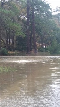 Flooding in Lake Park, GA on December 24, 2014. Photo courtesy of WALB-TV.