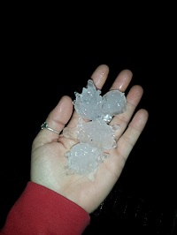 Large hailstones on Maryland Drive in Albany, GA during the pre-dawn hours of December 23, 2014. Photo submitted by Melissa Milstead to WALB-TV.