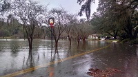 A flooded Lake Ella in Tallahassee, FL on December 24, 2014. Photo courtesy of Max Tsaparis via Twitter.